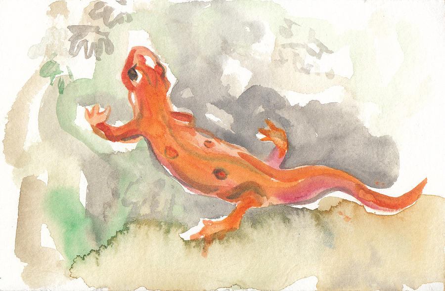 Red Eft by Abby McBride