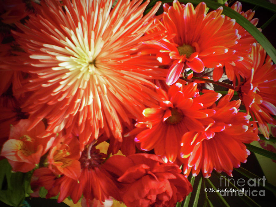 Red Flowers No. R12 by Monica C Stovall