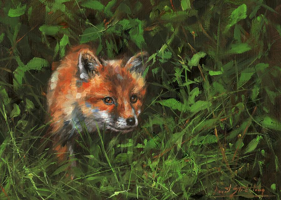 Red Fox in Undergrowth by David Stribbling