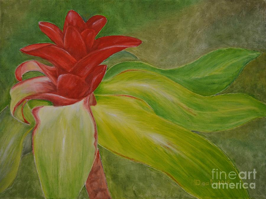 Red Ginger Bud by Mary Deal