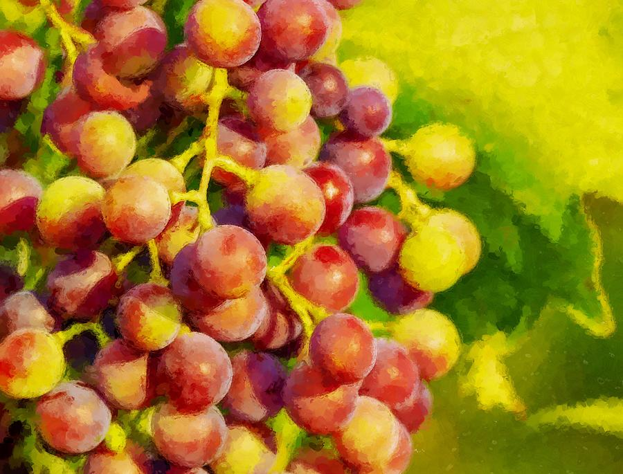 Red Grapes Ripening Digital Painting by Sandi OReilly