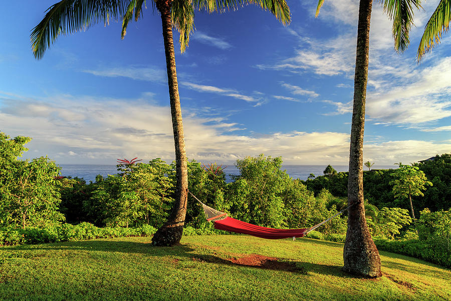 Red Hammock In Hawaii by James Eddy