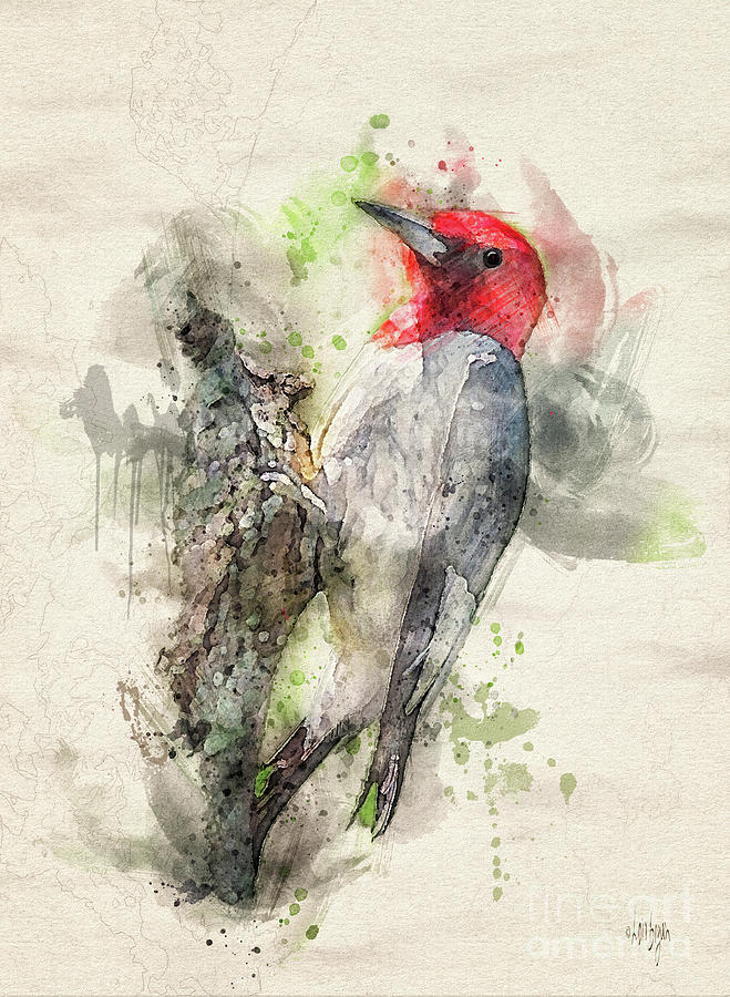 Red Headed Woodpecker by Lois Bryan