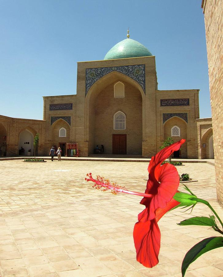 Red Hibiscus Bloom, Khast-imam Mosque Photograph by Ngaire Lawson