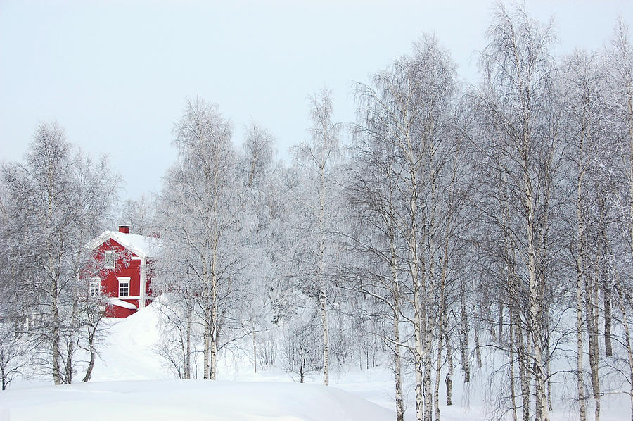 Red House In Winter Photograph by Sbossert