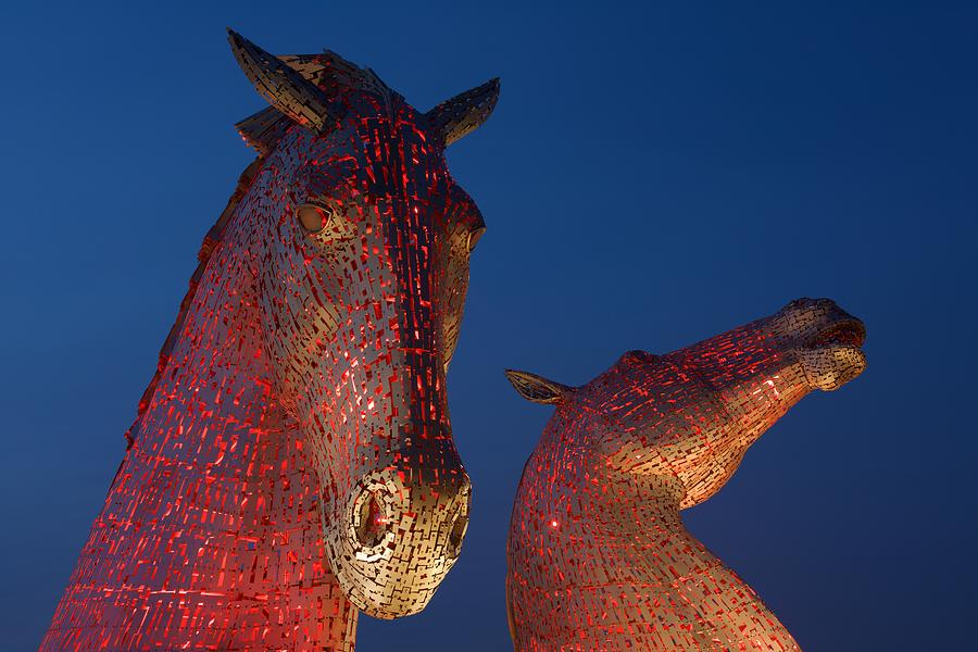 Red Kelpies by Stephen Taylor