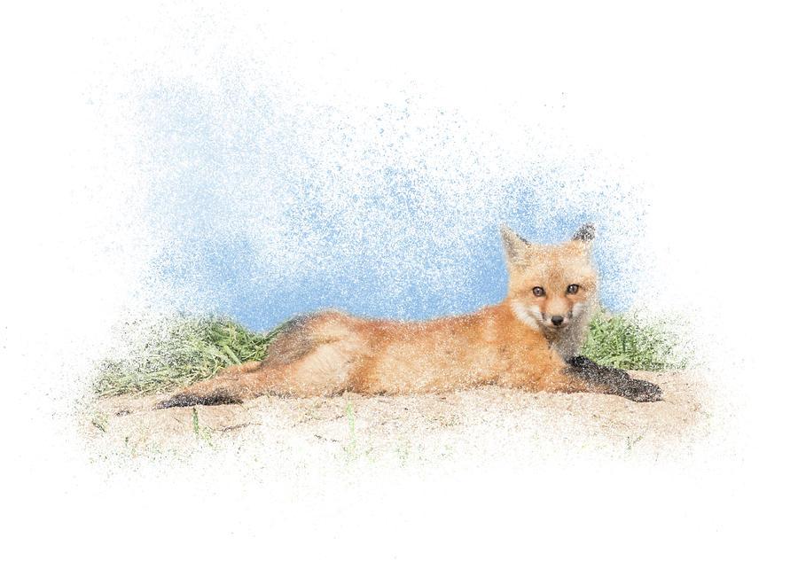 Red Kit Fox #16 - Yoga Sphinx by Patti Deters