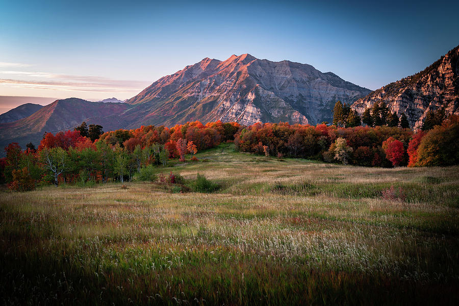 Red Leaves Autumn View of Mount Timpanogos by James Udall