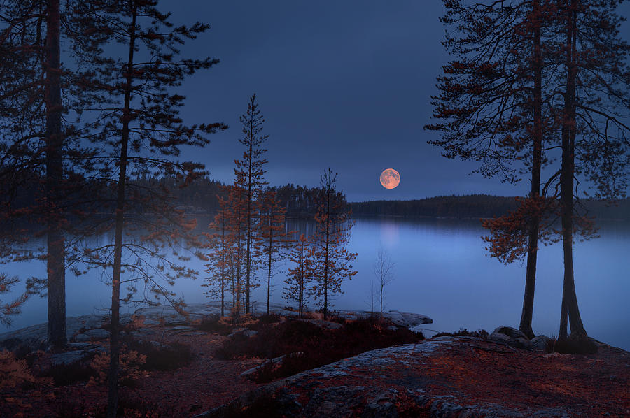 Landscape Photograph - Red Moon by Nikki Georgieva V E G A N I K