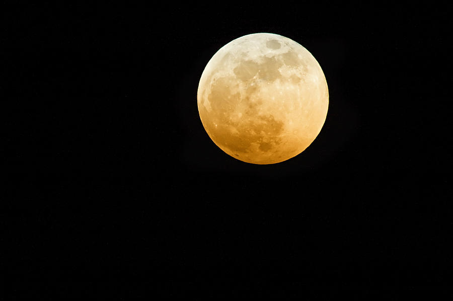 Red Moon Photograph by Stevedangers