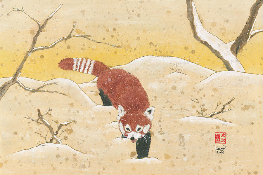 Red Panda in the Snow by Derek Motonaga