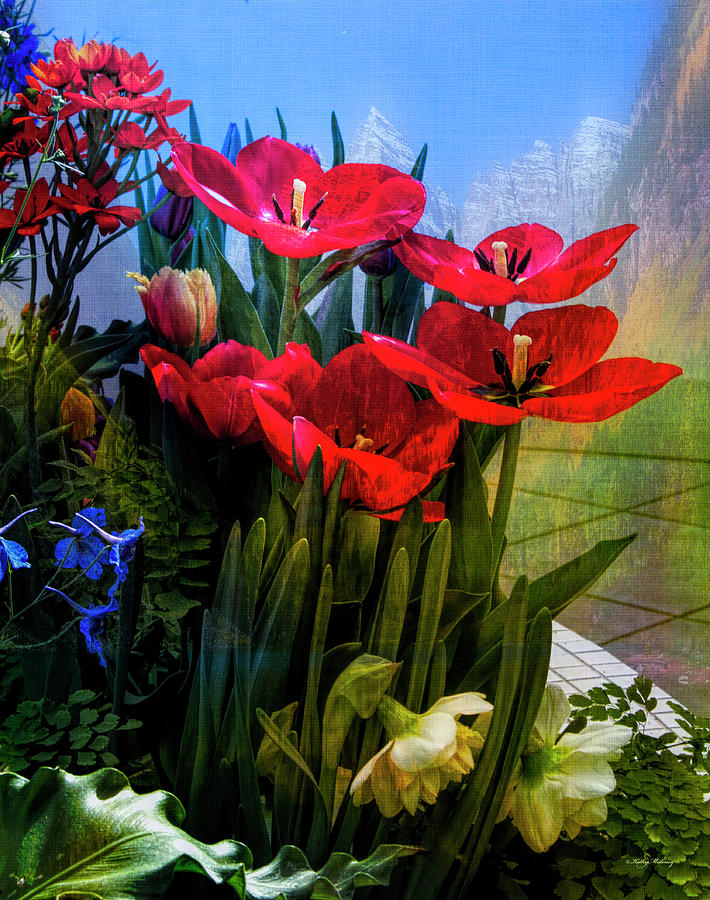Red Poppies by Kathy Maloney