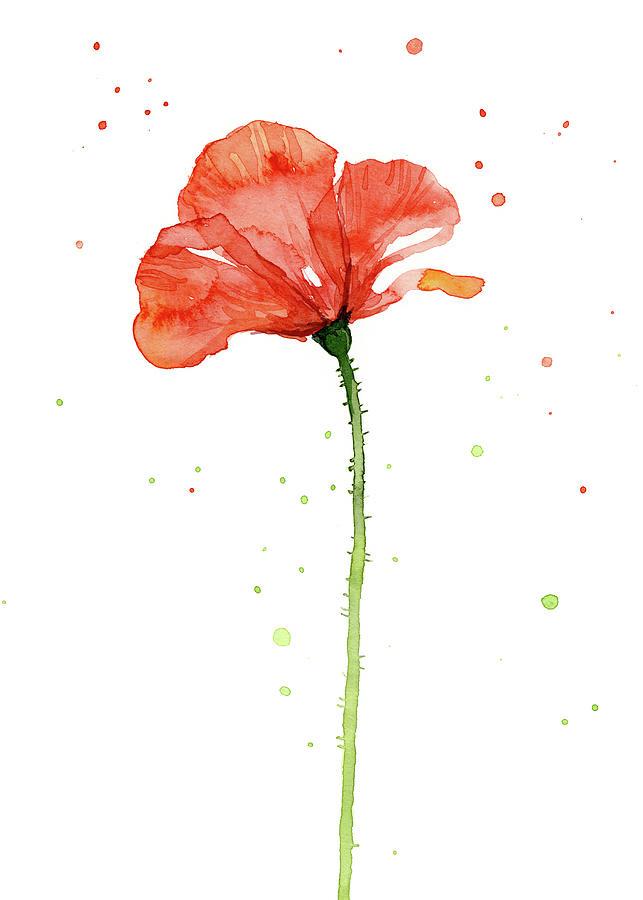 Poppy Painting - Red Poppy Flower by Olga Shvartsur