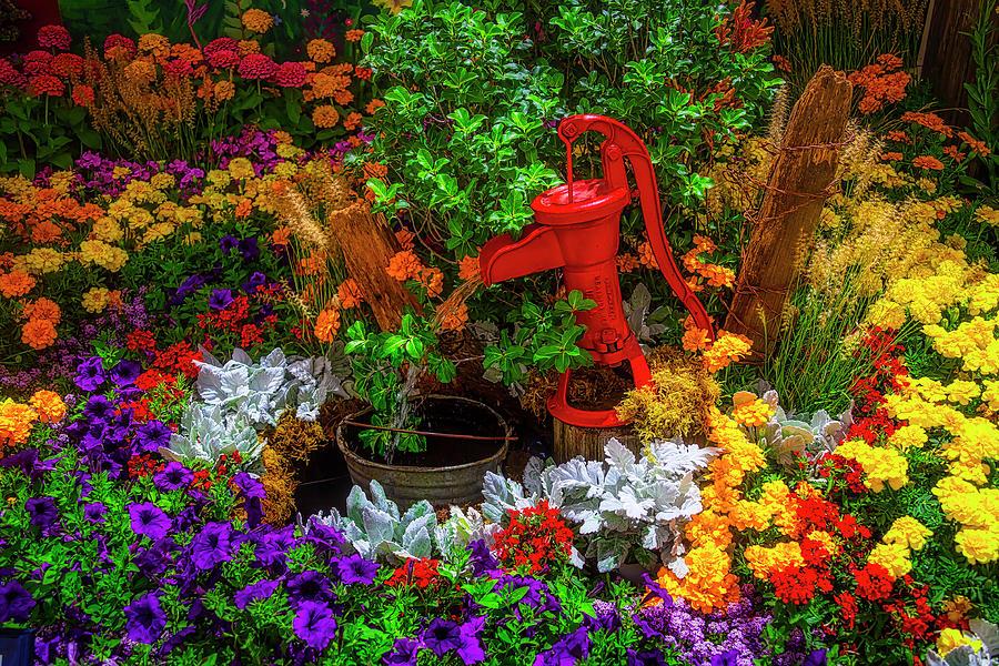 Red Pump In Flower Garden by Garry Gay