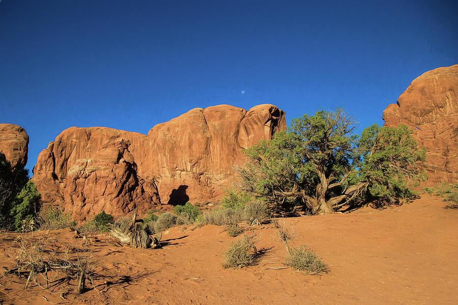 Red rock, blue sky by Gaye Bentham