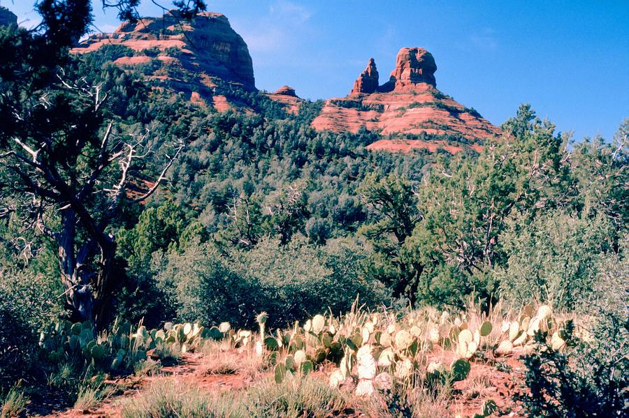 Red Rock Sedona by Scott Kingery