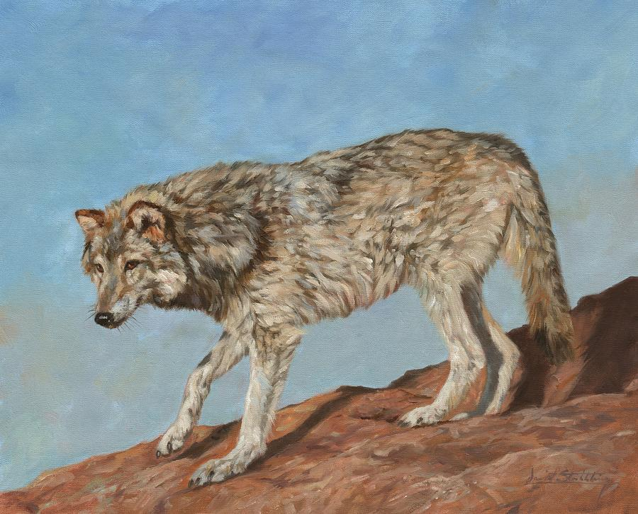 Red Rock Wolf by David Stribbling