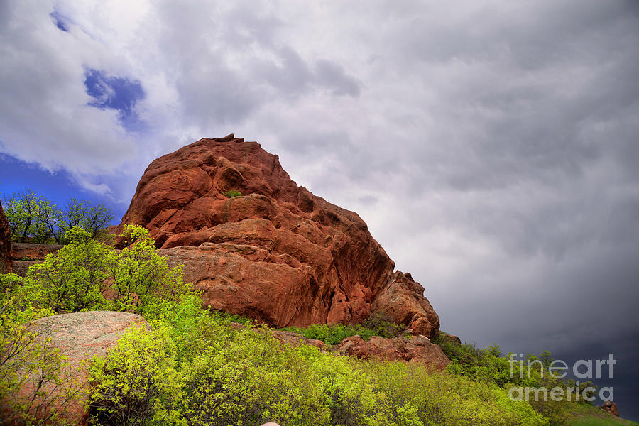 Red Rocks in Spring by Barbara Schultheis