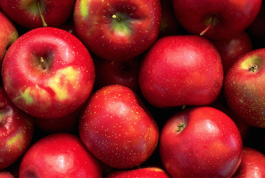 Red Rome Beauty Apples Photograph by Inga Spence