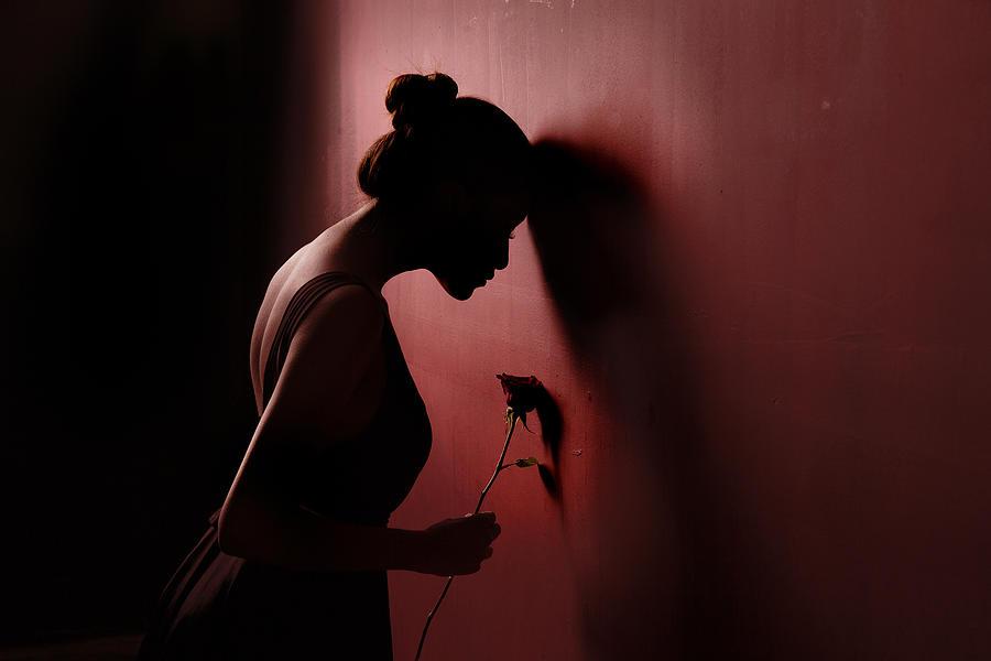 Mood Photograph - Red Rose 3 by Sebastian Kisworo