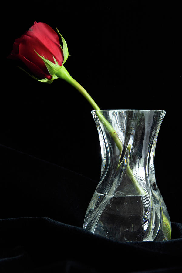 Red Rose and Vase by Jennifer Wick