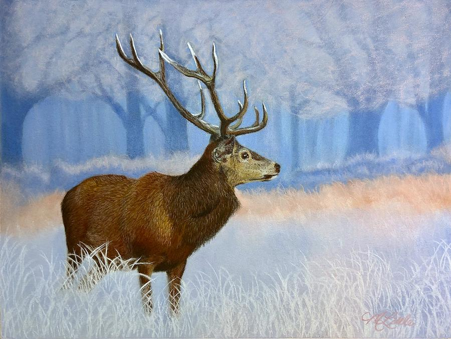 Red Stag 2 by Marlene Little