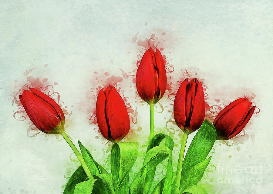 Red Tulips by Ian Mitchell