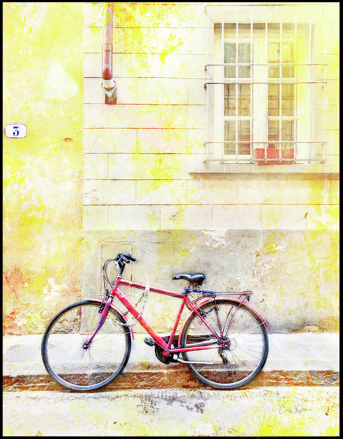 Red Valentine Bicycle by Craig J Satterlee