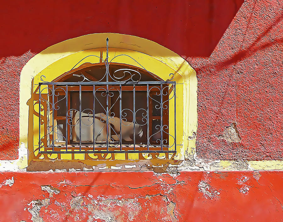 Red Wall with Arched Window by Douglas J Fisher