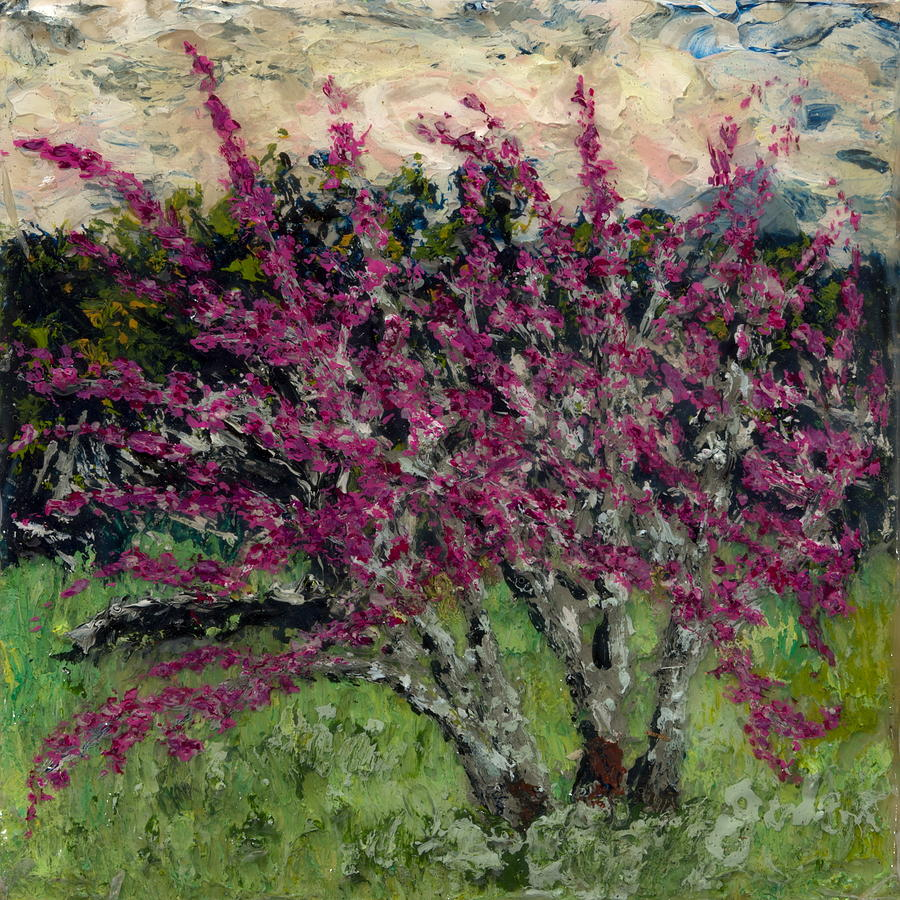 Redbud in March by Julene Franki