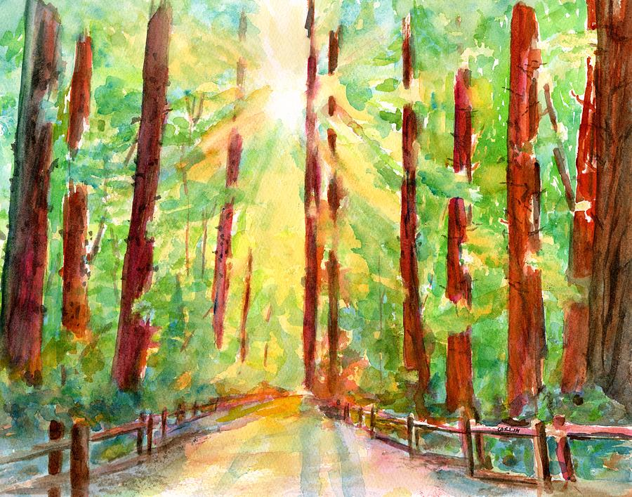 Redwoods and Sunshine by CarlinArt Watercolor
