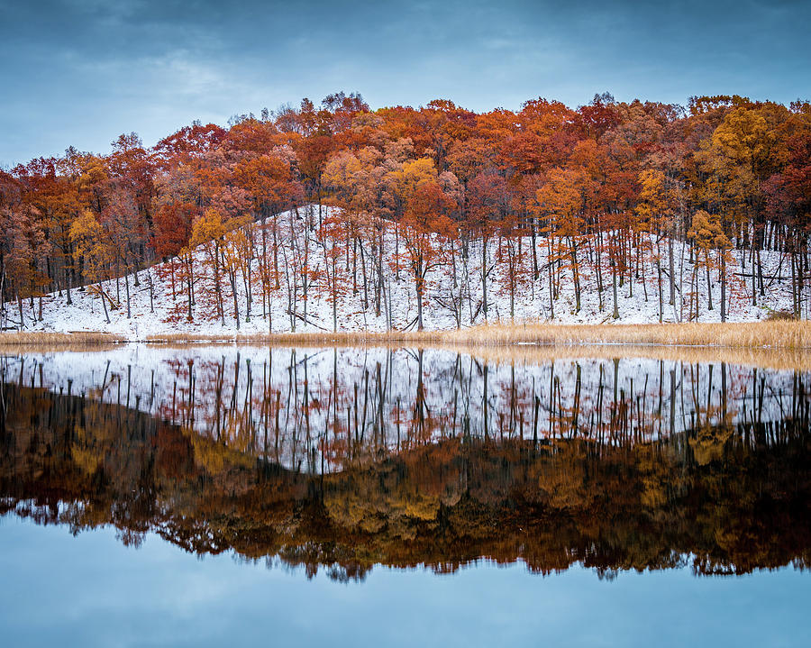 Reflect by Guy Coniglio