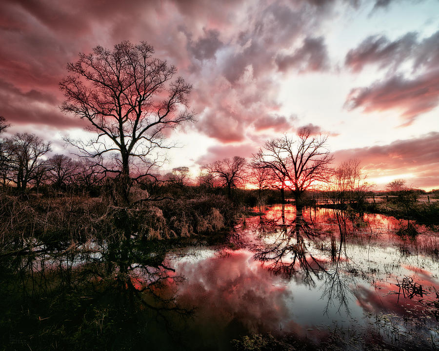 Reflected Beauty-  Sunset on a quiet pond in early spring by Peter Herman