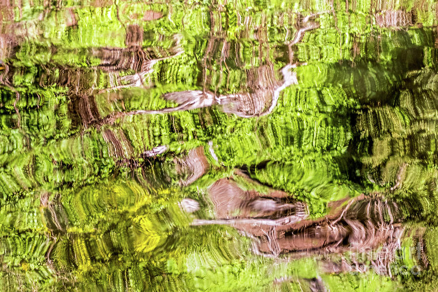 Reflection Abstract by Kate Brown