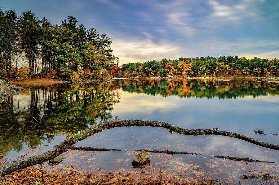 Reflection on Spot Pond by Michael Hubley