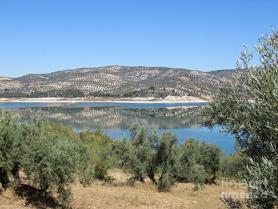 Reflection on the lake near Iznajar by Chani Demuijlder