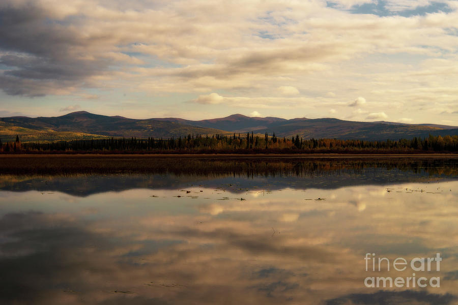 Lake Photograph - Reflection  by Priska Wettstein