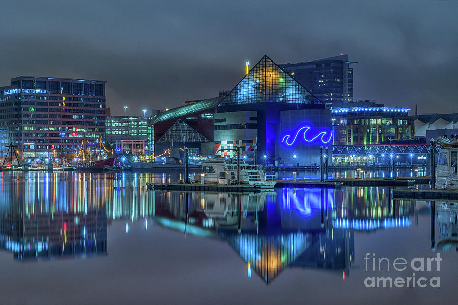 Baltimore Photograph - Reflections At The Inner Harbor by Imma Barrera