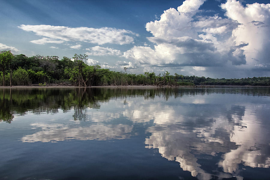 Reflections In Amazon River Photograph by By Kim Schandorff