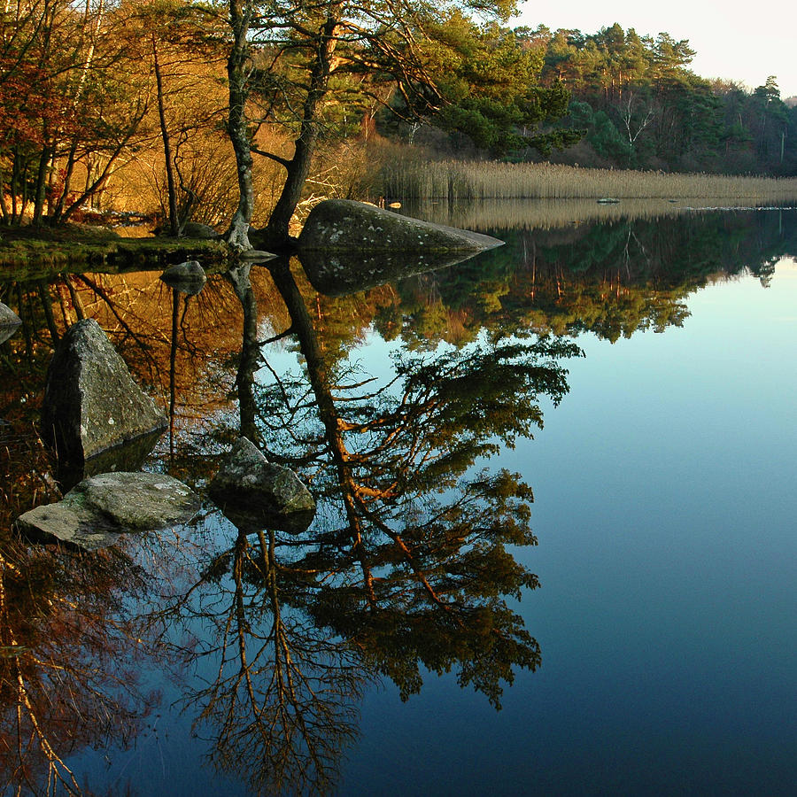 Reflections Photograph - Reflections In The Lac De Marle by Michael Briley