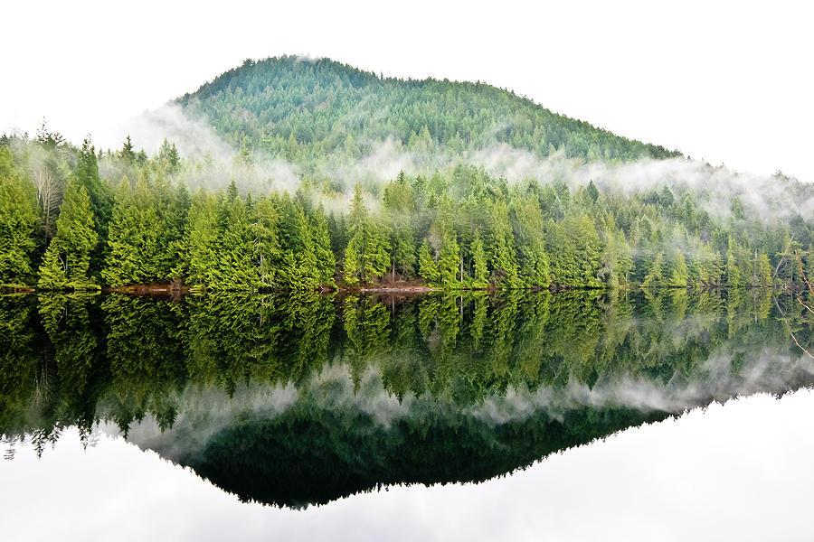 Reflections by Kaishin Chu