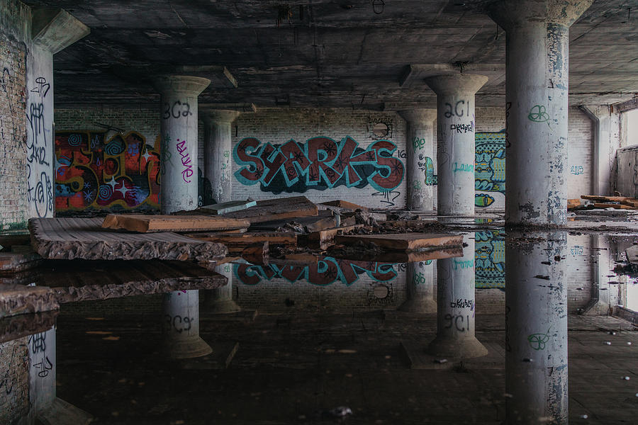 Detroit Photograph - Reflections Of Decay by Alex Brisbey