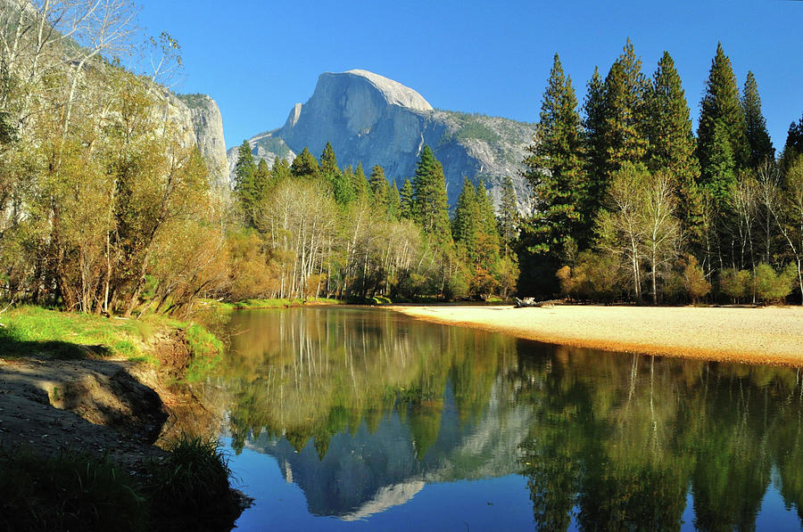 Reflections Of Half Dome Photograph by Sandy L. Kirkner