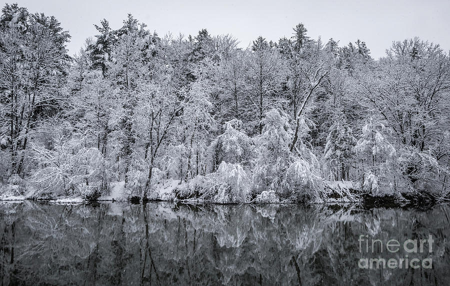 Reflections of Winter by Alan Schroeder