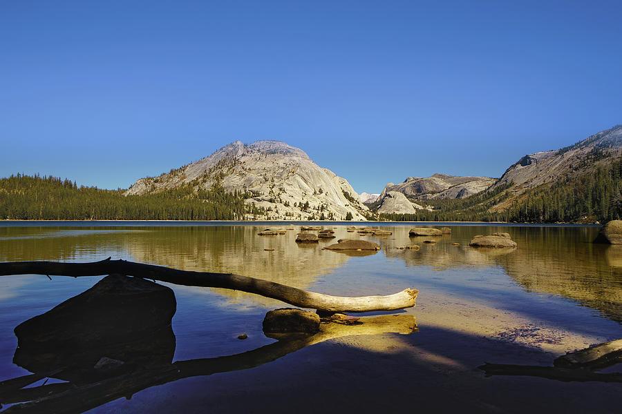 Reflections on Tenaya Lake by Janis Knight