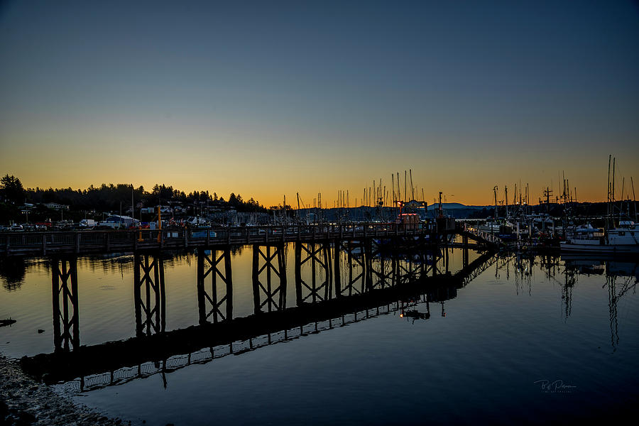 Reflections on the bay by Bill Posner