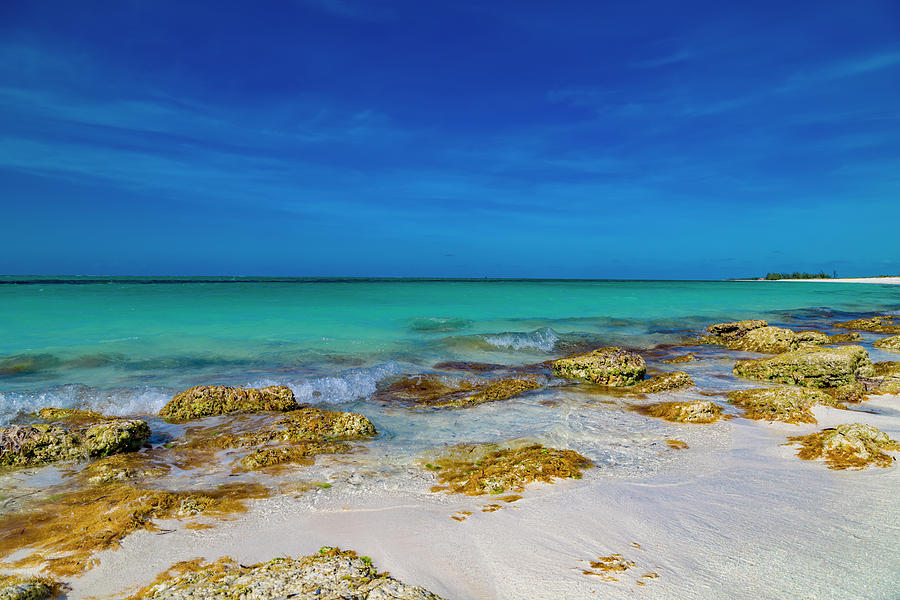 Tropical Photograph - Remote Beach Paradise Turks And Caicos by Betsy Knapp