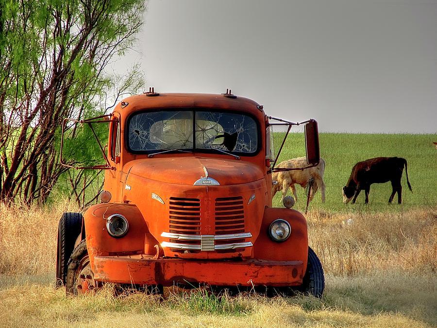 Texas Photograph - REO by John Bates
