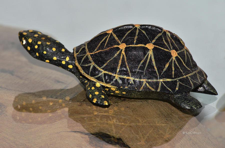 Replica Turtle and Shadow by Kae Cheatham
