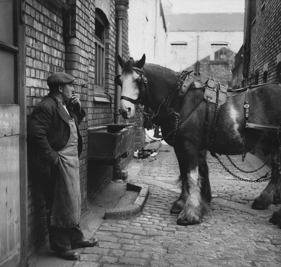 Rest At The Stables Photograph by Bert Hardy
